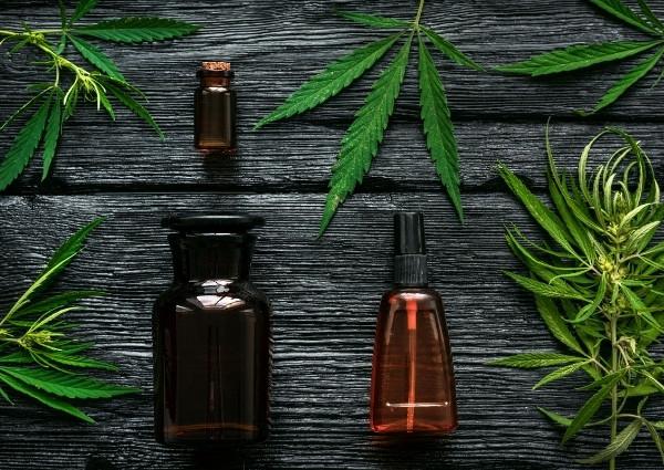 Cannabis classique ou CBD ?
